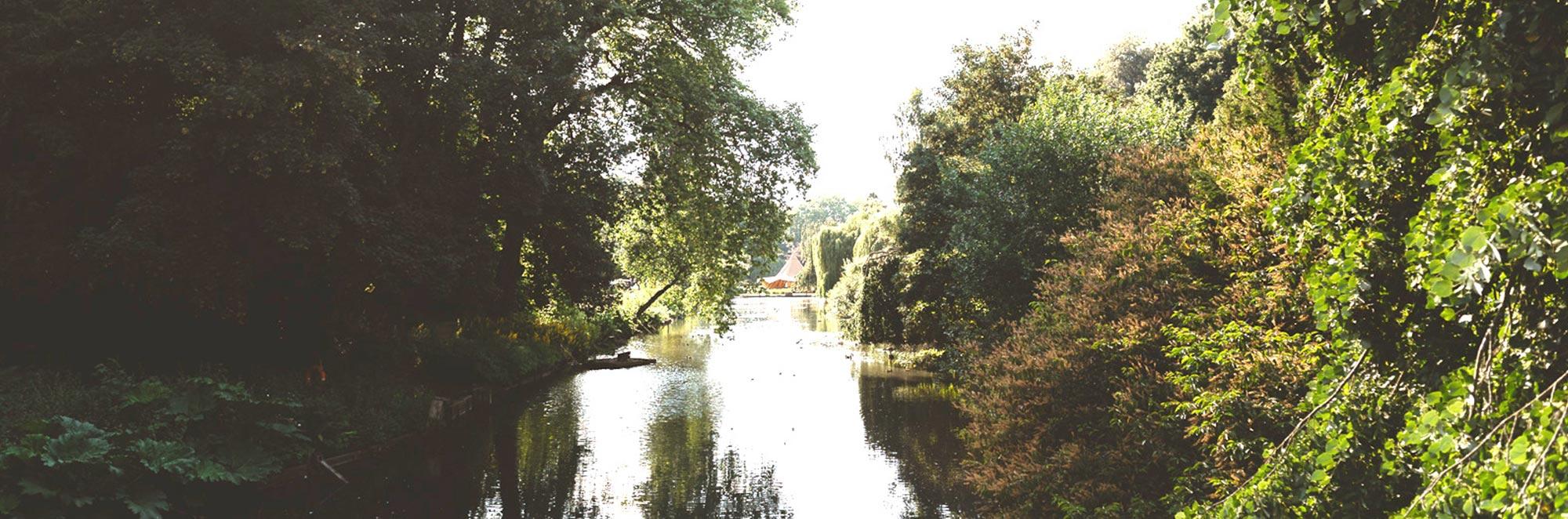 Busbridge Lakes, Godalming