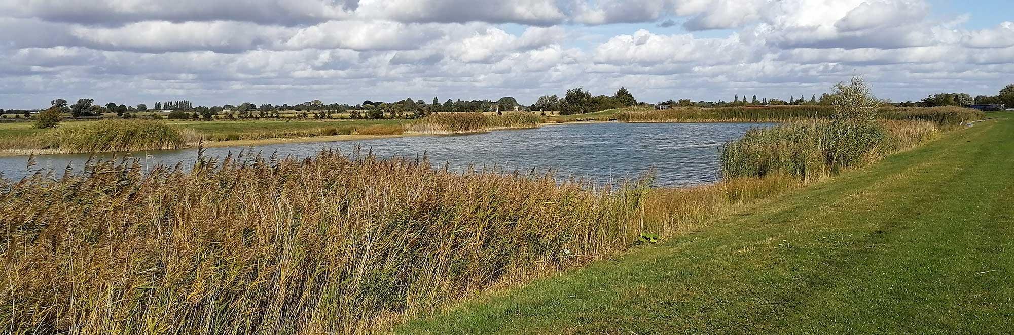 Cambridge County Polo Club
